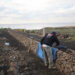 CASA FUERTE stone wall_0001 (800x533)
