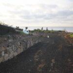 CASA FUERTE stone wall_0004 (800x533)